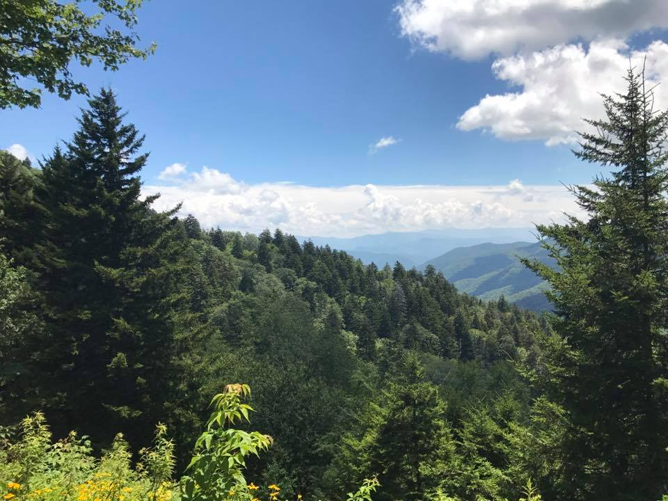 Trailside Talk: The Wild and the Mild