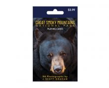 Bear Playing Cards