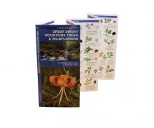 A Pocket Naturalist Guide Trees and Wildflowers