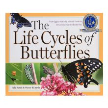 Life Cycles of Butterflies