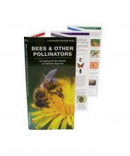 Bees & Other Pollinators Pocket Guide