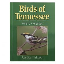 Birds of Tennessee