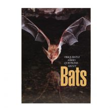 Frequently Asked Questions About Bats