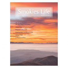 Smokies Life Magazine Vol 11, #1