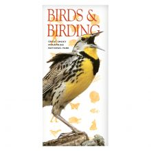 Super Info - Birds and Birding in the Smoky Mountains
