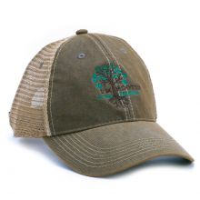 Im Rooted Hat