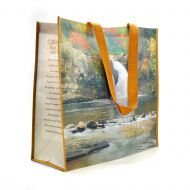 Recycled GSMNP Tote Bag