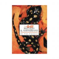 Reptiles and Amphibians of the Smokies