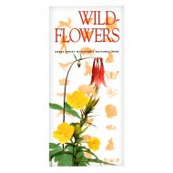 Super Info - Wildflowers of the Great Smoky Mountains
