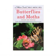 A Golden Guide to Butterflies and Moths