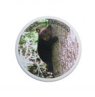 Bear Cub in Tree Car Coaster