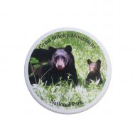 Bear W/Cub Car Coaster