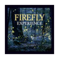 Firefly Experience