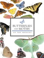 Butterflies and Moths of the Smokies
