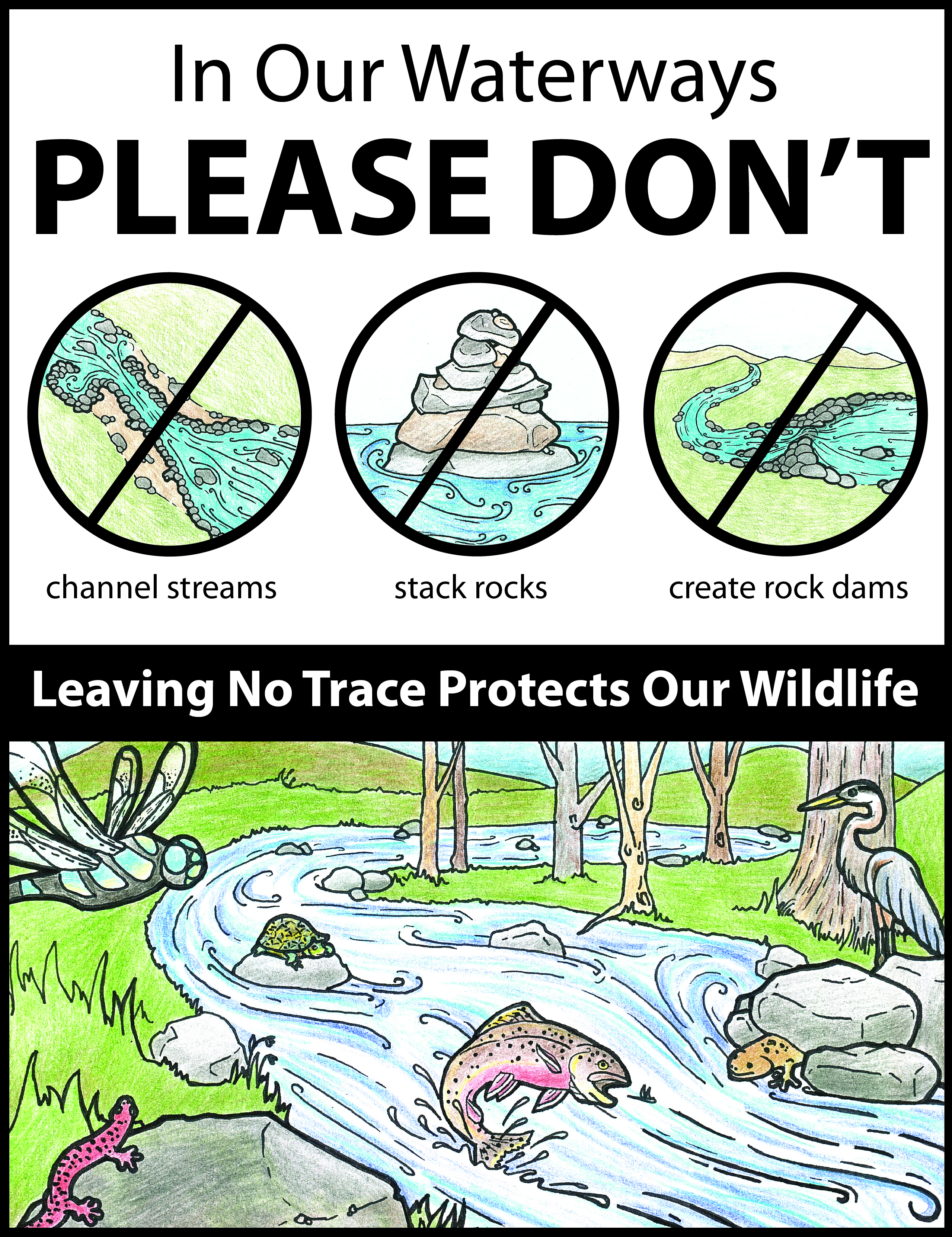Visitors to any park or natural area should refrain from moving rocks and keep the native habitat in place in order to protect fish, salamanders, and many other aquatic species.