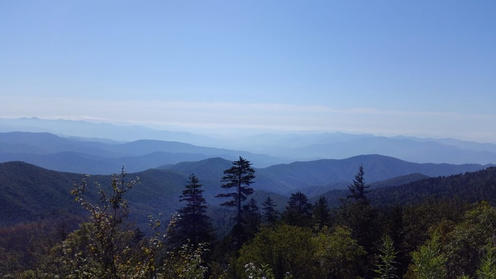 """View from Clingmans Dome tower off of the AT (Arthur """"Butch"""" McDade)"""