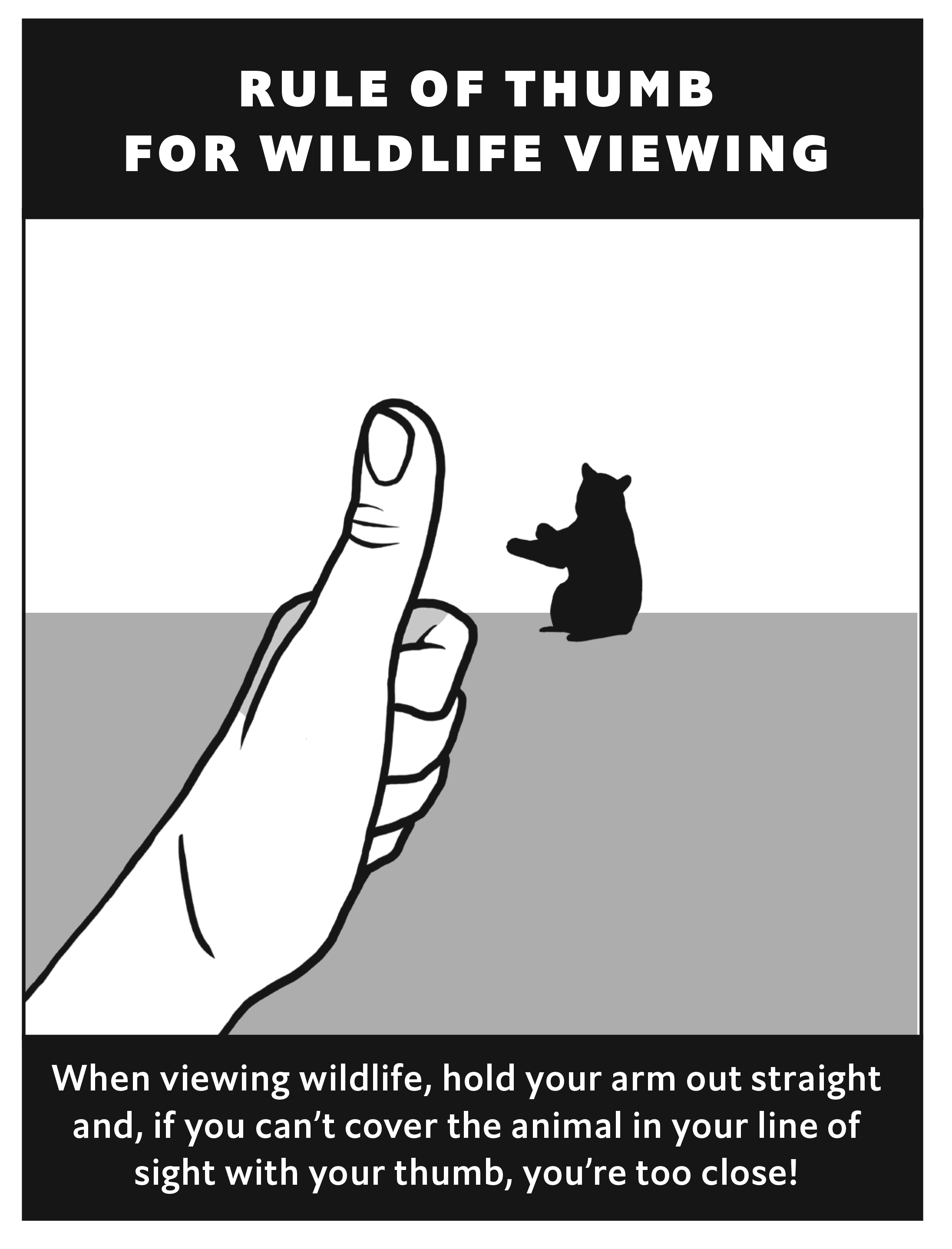 This rule of thumb can help you stay aware of how close you are to wildlife when visiting parks. Illustration courtesy of Emma DuFort, Great Smoky Mountains Association.