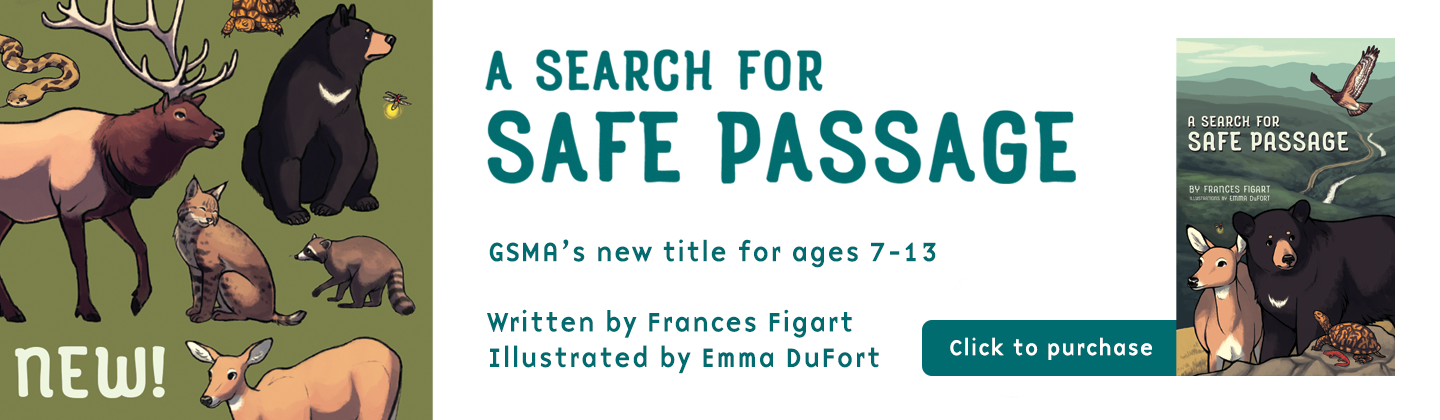 Search for Safe Passage store banner