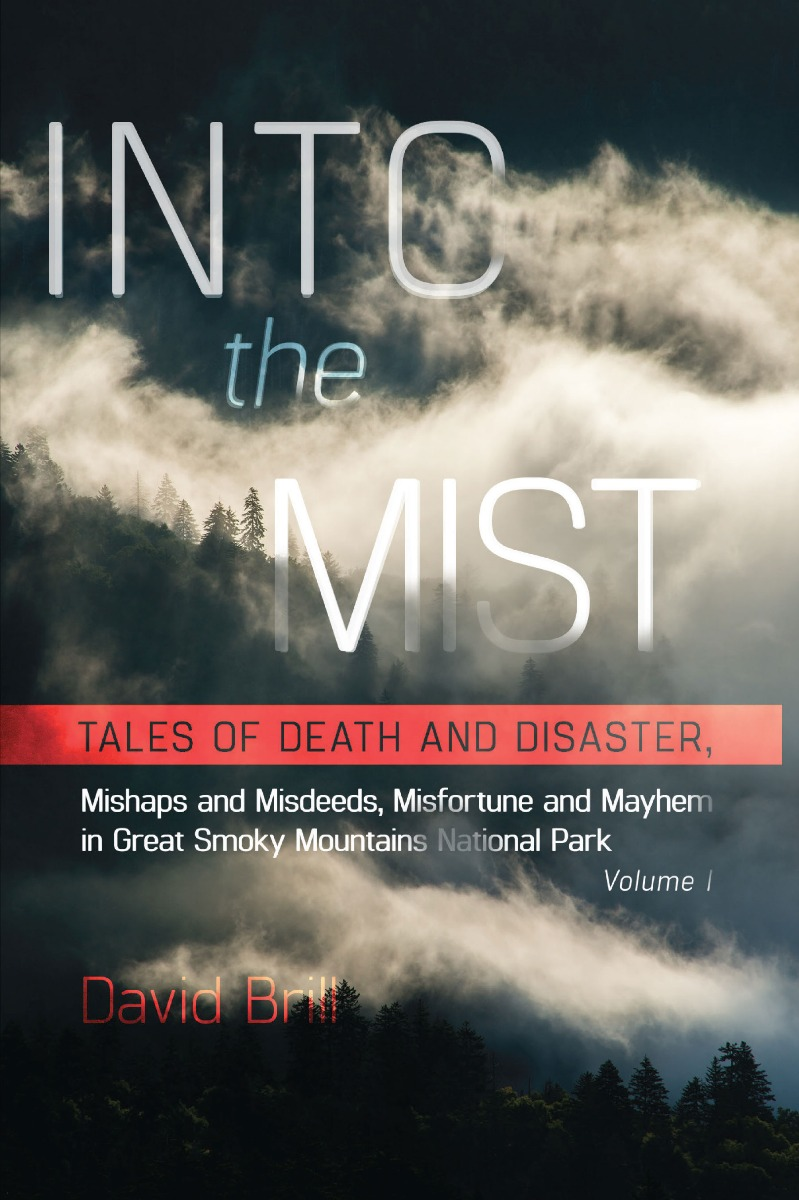 Into the Mist book cover