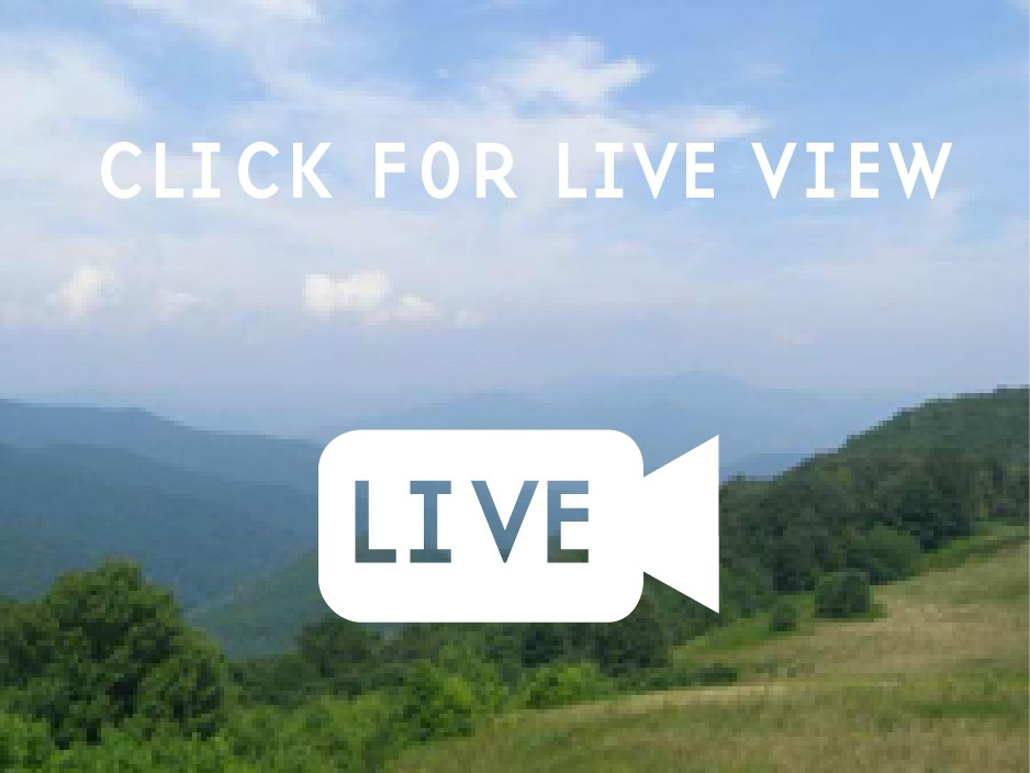 The view from the Purchase Knob webcam.