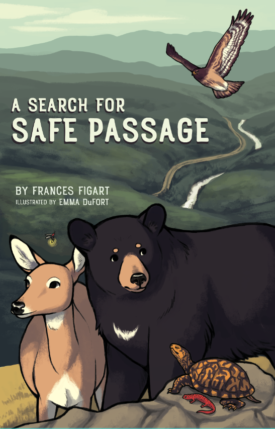 Safe Passage Book Cover
